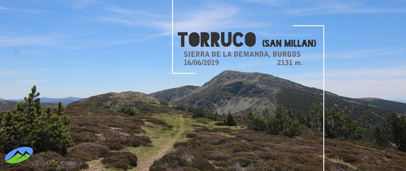 Torruco